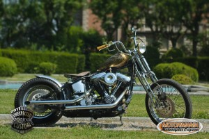 motorbike mustang chopper 02