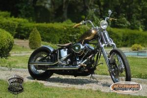 motorbike mustang chopper 04