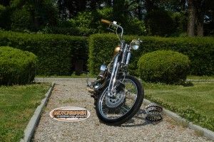 motorbike mustang chopper 12