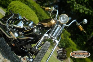 motorbike mustang chopper 15